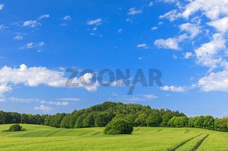 Himmel über Gerstenfeld in der Holsteinischen Schweiz
