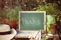Chalkboard and inscription Herbs in beautiful garden