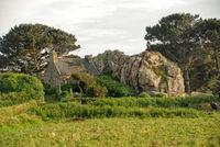 Brittany-Cote Granite Rose