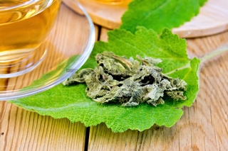 Sage dried on fresh leaf with cup on board