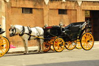 Horse and carriage Malaga