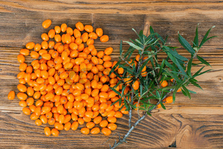 Heap of sea buckthorn fruits and twig with green leaves laying on wooden table