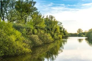 Landschaft am Dümmer See-78