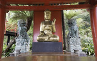 golden buddha in japanese garden