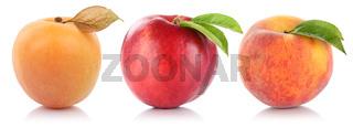 Pfirsich Nektarine Aprikose Frucht Früchte Obst Freisteller freigestellt isoliert