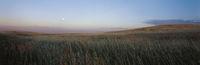 country panaroma