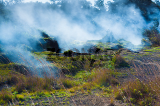 Fumes from the sulfur gas vents along the trail in Hawaii Volcanoes National Park