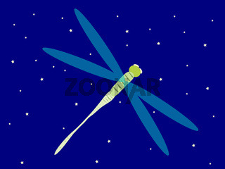 Dragonfly night sky stars lake
