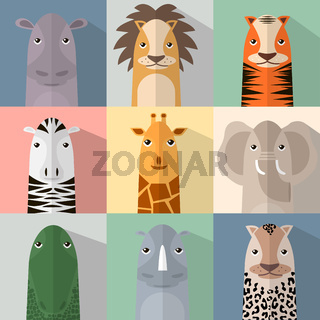 Flat animal icon set with shadow. African animals.
