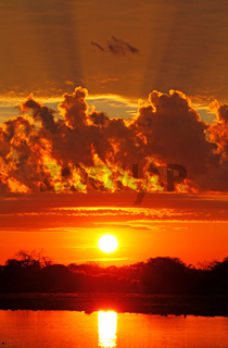 Sonnenaufgang, Etosha-Nationalpark Namibia; sunrise, Etosha National park, Namibia