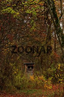 Hochsitz im Herbstwald, Bayern