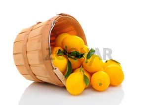 Lemon Basket Spill