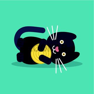 Cat plays