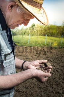 Examining soil