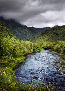 Tahiti.Tropical nature and mountain river.