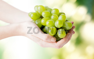 close up of woman hands holding green grape bunch