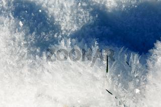 Eiskristalle Landschaft Gras