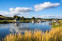 Bodden landscape island Ruegen