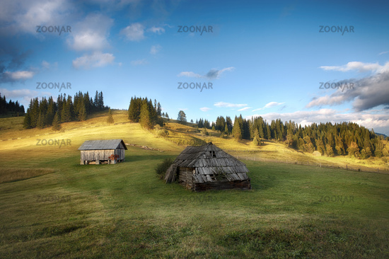 Carpathian mountain sunny hills