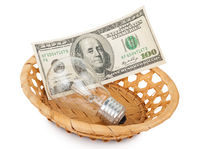 Incandescent light bulb and money in basket