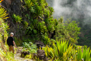 White man with black shirt,hat and backpack standing between plants at a foggy mist cliff on mountain in cape verde