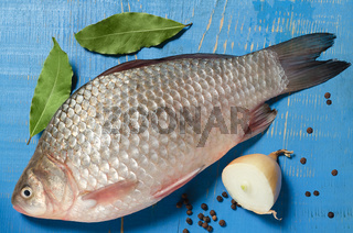 Raw fish on a blue wooden background