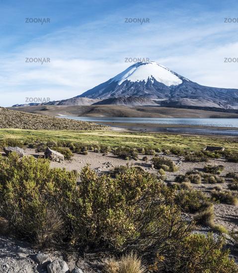 Parinacota Volcano, Lauca, Chile
