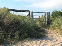 Baltic Sea Dune