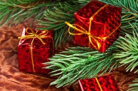 branch of Christmas tree with gift box