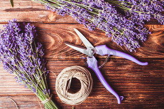 The Lavender cutting