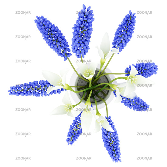 top view of flowers in vase isolated on white background. 3d illustration