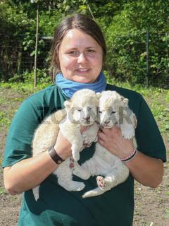 Zootierpflegerin Julia Forst präsentiert die Weißen Löwenbabys  Zoologischen Garten Magdeburg 6.5.16