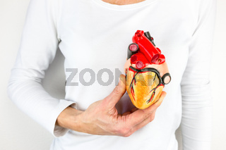 Hand holding human heart model in front of chest