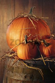 Autumn still life with pumpkins on barrel