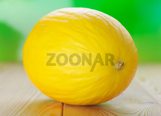 Yellow melons on wooden table