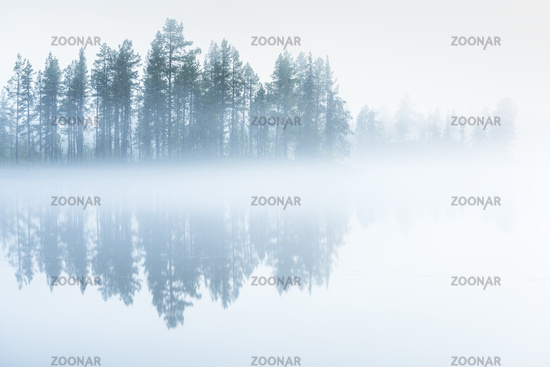 morning fog on a lake, Lapland, Sweden