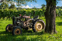 old tractor in the vineyard / southern burgenland