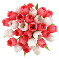 top view of tulips in jug isolated on white background