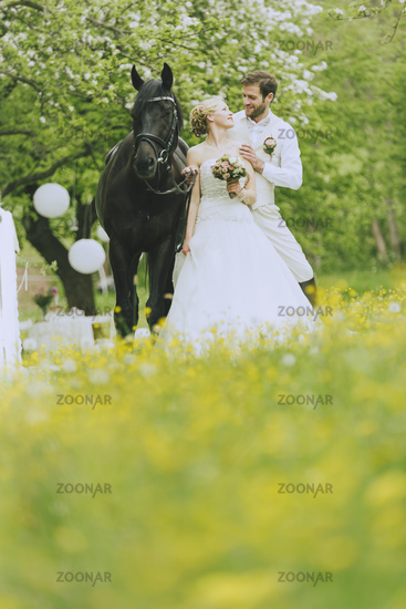 Garden Wedding with horse