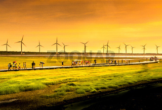 People on walkway across wetlands with wind farm turbines in background.