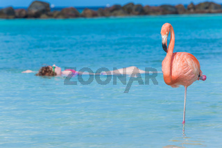 Woman floating on a back in Flamingo beach. Aruba