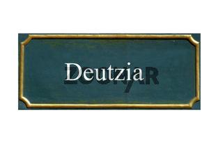 schild Deutzia, Deutzie, Deutzien