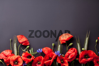 Heads of red poppies, rye and cornflowers on black background