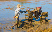 Vietnamese farmer prepares field for rice sowing