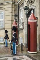 Copenhagen Royal Guards