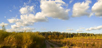 Sunny Day in Mamontovka Village