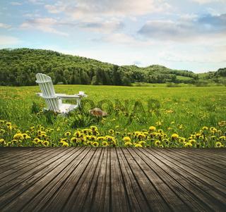 Empty wooden table top in open fields of dandelions