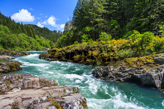 Mountain river and forest in North Cascades National Park Washington USA