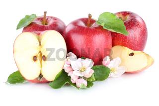 Apfel Äpfel rot Frucht Früchte geschnitten Hälfte Freisteller freigestellt isoliert