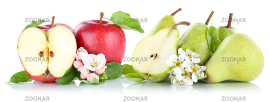 apple and pear apples pears fruits red green fruit exemption exempted isolated